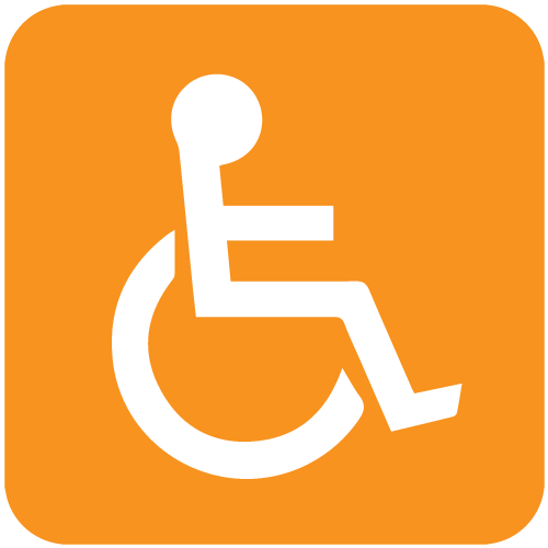 Husso Icon Disabilities